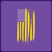 Purple and Gold American Flag T-Shirt by Storyville